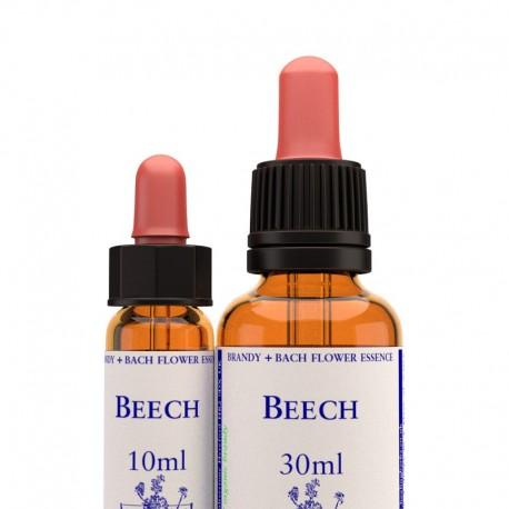 Beech: Haya - Flor de Bach (30 ml.)
