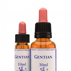 Gentian: Genciana de campo - Flor de Bach (30 ml.)