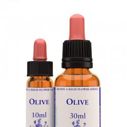 Olive: Olivo - Flor de Bach (30 ml.)