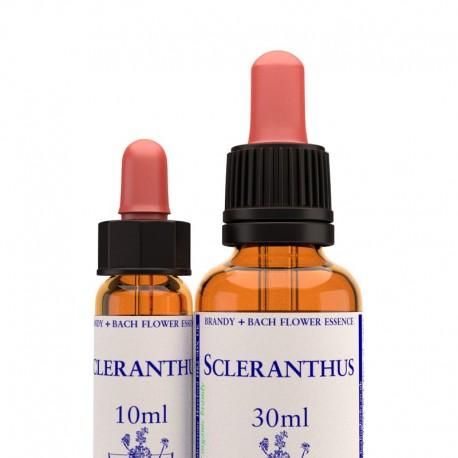 Scleranthus: Scleranthus - Flor de Bach (30 ml.)