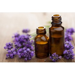 Lavanda - Aceite esencial orgánico para aromaterapia