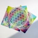 Flor de la Vida - Calcomanía con onda de forma y de color