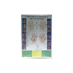 Reflexología de las manos - Poster