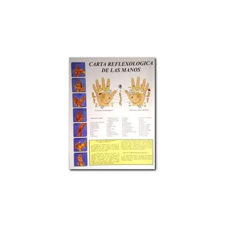 Reflexología de las manos - Carta - Referencia de bolsillo