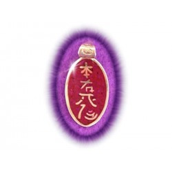 Dije Reiki La Pagoda - Plata doble